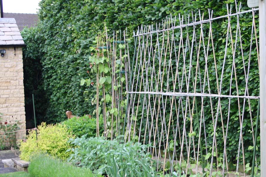 Haveplaner -urtehaven på stativ