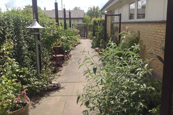 En frodig indgang til din have